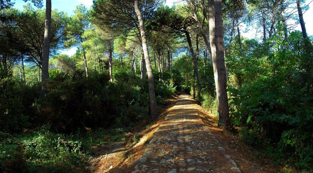 Parco di Portofino: riparte l'iter per diventare nazionale